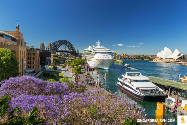 ve may bay di sydney singapore airlines
