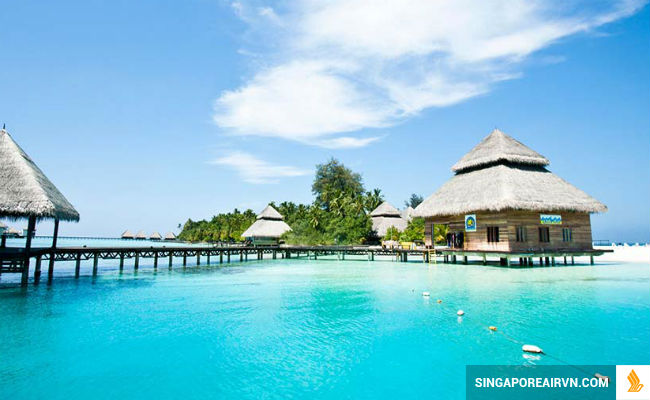 ve may bay di maldives gia re