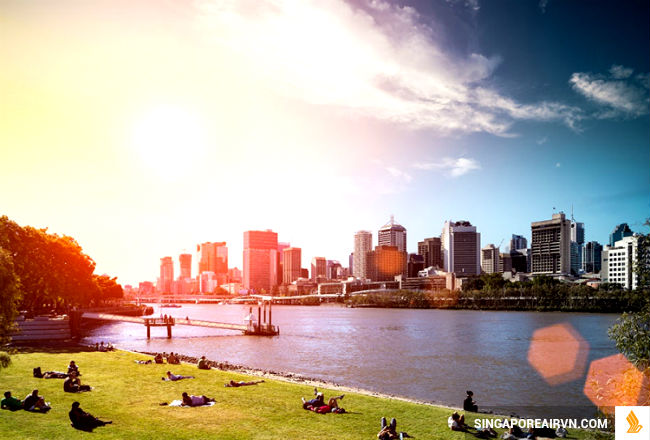 ve may bay di brisbane gia re
