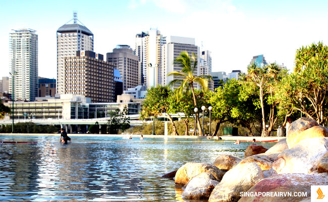 ve may bay di brisbane