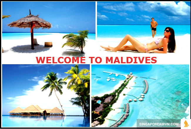 ve-may-bay-di-maldives-4-15416