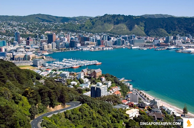 ve may bay di new zealand gia re